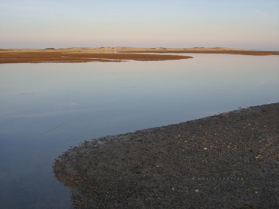 wp-marsh02