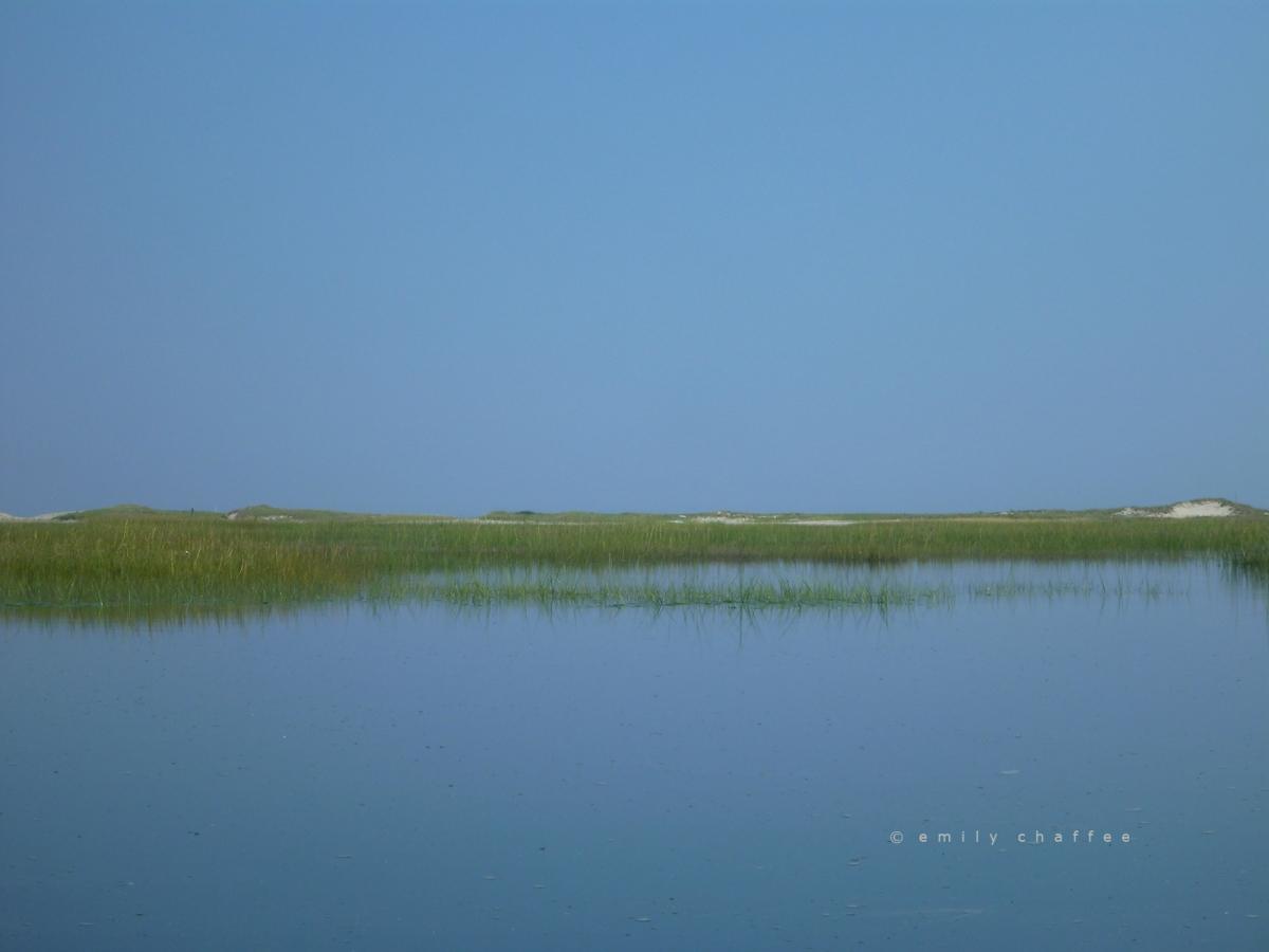 wp-marsh03