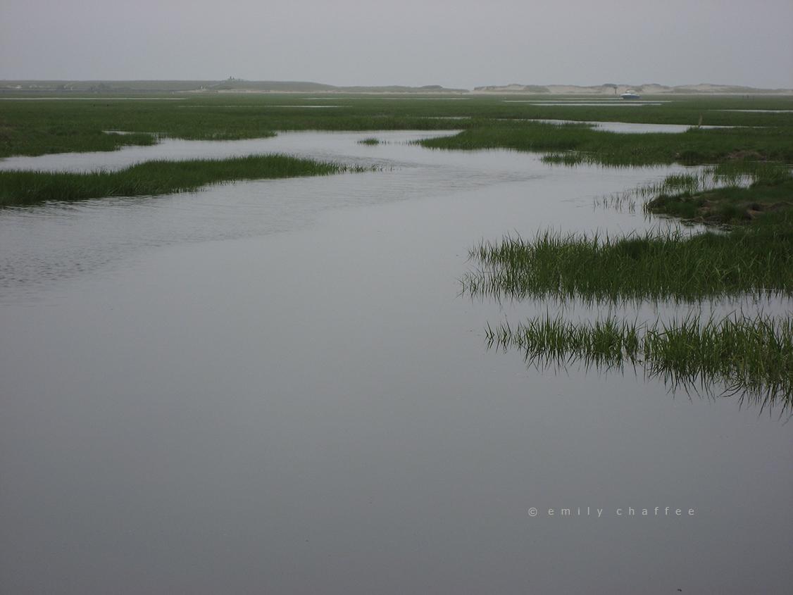 wp-marsh04