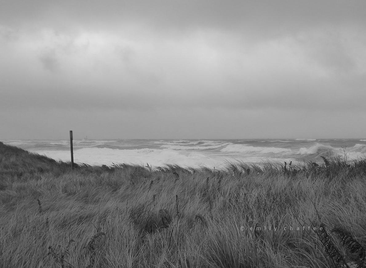 hurricane dune. cape cod bay.
